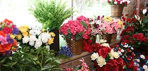 Colorful array of flower arrangements